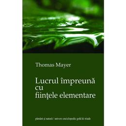 Lucrul impreuna cu fiintele elementare - Thomas Mayer, editura Univers Enciclopedic