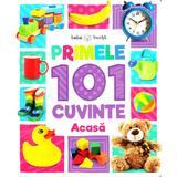 Primele 101 cuvinte: Acasa (Bebe invata), editura Litera
