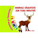 Animale salbatice din tara noastra - Coloram si invatam!, editura Ars Libri