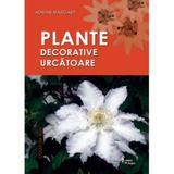 Plante decorative uscatoare - Adrian Margarit, editura Cetatea De Scaun