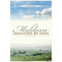 Moldova bisericilor de lemn - Otilia Balinisteanu, editura Trinitas