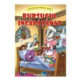 Bursucul Incapatanat - Claudia Cojocaru, editura Teopiticot