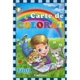 Carte De Colorat: Baieti, editura Teopiticot