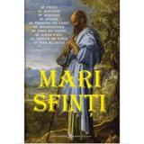 Mari Sfinti, editura Meteor Press