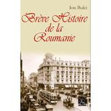 Breve Histoire de la Roumanie - Ion Bulei, editura Meronia