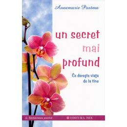 Un secret mai profund - Annemarie Postma, editura Mix