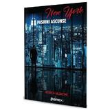 New York. Pasiuni ascunse - Rodica Mijaiche, editura Librex Publishing