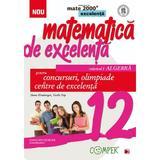 Matematica de excelenta - Clasa 12 Vol.1: Algebra. Pentru concursuri, olimpiade si Centre de excelenta, editura Paralela 45