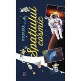Marea carte a spatiului cosmic - Anne Lesterlin, Laurent Audouin, editura Rao