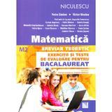 Matematica M2. Breviar teoretic. Exercitii si teste de evaluare pentru bacalaureat - Petre Simion, Victor Nicolae, editura Niculescu