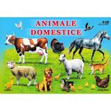Animale domestice, editura Biblion