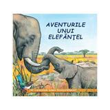 Aventurile unui elefantel - Sa cunoastem lumea inconjuratoare!, editura Biblion