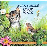 Aventurile unui pisic - Sa cunoastem lumea inconjuratoare!, editura Biblion