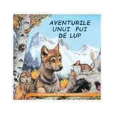 Aventurile unui pui de lup - Sa cunoastem lumea inconjuratoare!, editura Biblion
