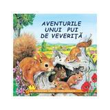 Aventurile unui pui de veverita - Sa cunoastem lumea inconjuratoare!, editura Biblion