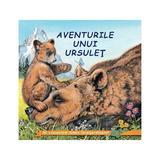 Aventurile unui ursulet - Sa cunoastem lumea inconjuratoare!, editura Biblion