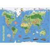 Plansa: Harta lumii, editura Didactica Publishing House