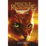 Pisicile Razboinice vol.12: Apus de soare - Erin Hunter, editura All