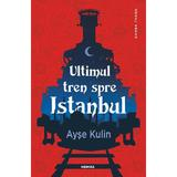 Ultimul tren spre Istanbul - Ayse Kulin, editura Nemira