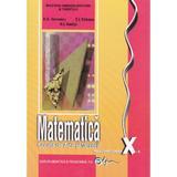 Matematica cls 10 SAM ed.2008 - A.D. Vernescu, E.I. Nedita, E.B. Eriksen, editura Didactica Si Pedagogica