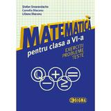 Matematica cls 6 Exercitii, probleme, teste - Stefan Smarandache, editura Sigma