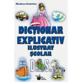 Dictionar explicativ ilustrat scolar - Niculescu Ecaterina, editura Steaua Nordului